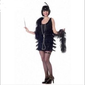 Fashion Flapper Dress Costume